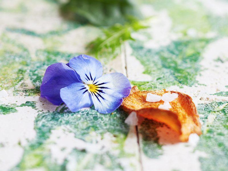 Kräutertofu-Feigensalat-Süßkartoffelchips