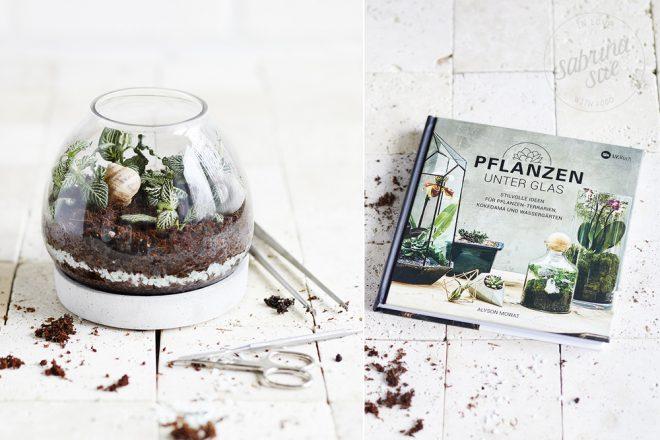 Pflanzen unter Glas